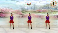 特效舞蹈《映山红》制作:永不疲倦 正背面演示及口令分解动作教学和背面演