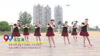 漯河市轻舞飞扬舞队舞蹈 北江美 表演 团队版附正背面口令分解教学演示