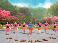恋舞依依舞蹈 映山红 表演 团队版 口令分解动作教学演示