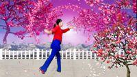 原野明珠舞蹈《映山红》背面演示 口令分解动作教学演示
