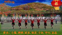 山東快樂廣場舞《張燈結彩》編舞:羽蝶 完整版演示及分解教學演示