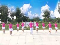 艺海林原创健身舞舞蹈  青春洋溢  表演与动作分解 团队版 完整版演示及口令分解动作教学