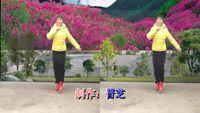 紫云英舞蹈〈老妹你真美〉鬼步舞:编舞:青青附正背面口令分解教学演示