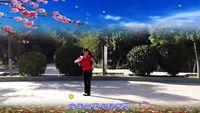 新疆舞之玲个人版《映山红》编舞张惠萍 完整版演示及分解教学演示