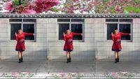 汝州镜子舞蹈《桃花运》 正背面演示及口令分解动作教学