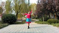 舞緣廣場舞《藍色天夢》編舞:雨夜 經典正背面演示及口令分解動作教學