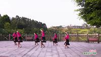 重庆丰田村舞队舞蹈 北江美 表演 团队版 口令分解动作教学