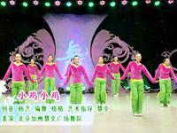 北京加州飛龍廣場舞 小雞小雞 表演 正背面口令分解動作教學演示