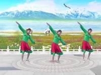 咸安杨杨舞蹈 歌在飞 表演 个人版 完整版演示及口令分解动作教学