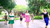 水仙花廣場舞《花開的時候你就來看我》正背面演示及口令分解動作教學和背面演