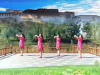 辛集市九色鹿舞蹈 西藏情歌 表演 原创附教学口令分解动作演示