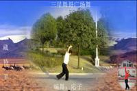 三星舞哥舞蹈 藏羚羊 表演 个人版 口令分解动作教学演示