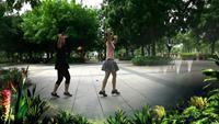 水仙花廣場舞《歡樂的跳吧》正反面演示及分解動作教學