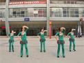重庆葉子广场舞 草原的月亮 附凤凰六哥背面演示