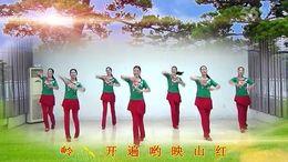 开心飞扬舞蹈《映山红》编舞刘荣 团队正背面演示