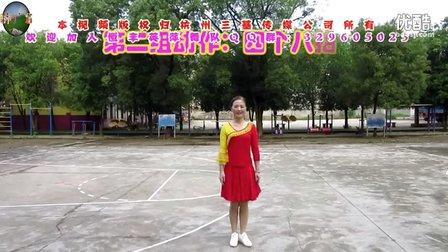 恒丰英萍广场舞《我不是狼》原创舞蹈 附正背面口令分解教学演示