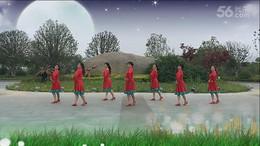 桃花垠广场舞《草原的月亮》原创舞蹈 团队正背面演示