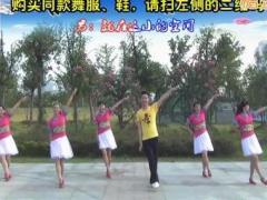 楠楠广场舞《如果真的有来生》原创舞蹈 附正背面口令分解教学演示