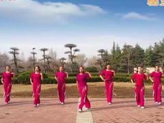 舞动旋律2007广场舞《十分钟》原创爵士舞 附正背面口令分解教学演示