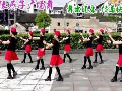 沅陵燕子广场舞《雪山姑娘》原创单人水兵舞 附正背面口令分解教学演示