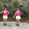 菲菲8廣場舞