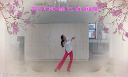 花与影广场舞《芙蓉雨》编舞静静 习舞无边舞际