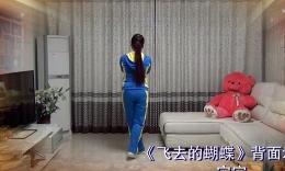 北京加州广场舞《飞去的蝴蝶》原创舞蹈 附正背面分解教学演示