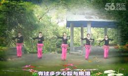 大湾群联广场舞《风飞》 原创舞蹈 团队演示 附正背面分解教学
