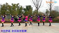 糖豆广场舞课堂《雪山姑娘》编舞西梅 附动动老师正背面口令分解教学演示