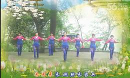 大湾群联广场舞《说句心里话》原创舞蹈 团队演示 附正背面分解教学