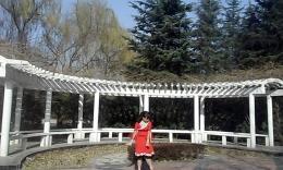 洛阳龙兴广场舞《雪山姑娘》编舞花语