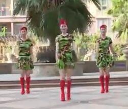 杨丽萍舞蹈《DJ当兵就是那么帅》口令分解动作教学演示