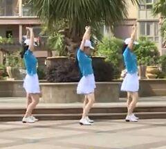 杨丽萍舞蹈《你不是我要的女人》正背面口令分解动作教学演示