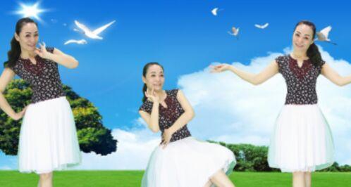 兰州莲花舞蹈《我要醉在草原上》正背面口令分解动作教学演示