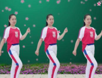 圆月如歌舞蹈《野花香》经典正背面演示及口令分解动作教学