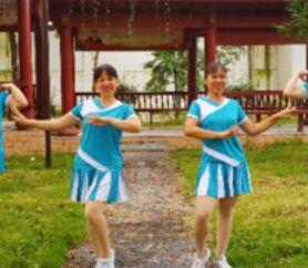 婷婷飞舞舞蹈《蝴蝶翩翩飞》附正背表演口令分解动作分解教学