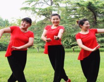 济南朵朵舞蹈《策马归来青草香》正反面演示及分解动作教学