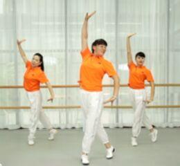 青兒廣場舞《朗迪八段錦健身操》正背面口令分解動作教學演示