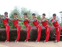 楊麗萍廣場舞《兔子舞》圈圈舞3種跳法集體舞 附正背面口令分解教學演示