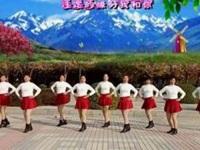 河南周口姐妹广场舞《一生一世我爱你》原创水兵舞 附正背面口令分解教学