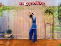 蝶恋习舞日记《再唱洪湖水》原创古典舞 附正背面口令分解动作教学演示