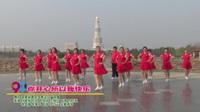 河南省周口市映山红广场舞  你开心所以我快乐 表演 团队版
