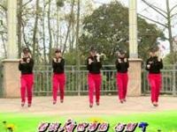 杨丽萍广场舞《中国好兄弟》原创舞蹈励志健身操 口令分解动作教学演示