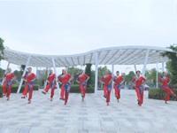 湖南郴州汝城欣妍舞队广场舞 雨打芭蕉 表演 团队版