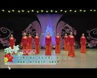 河北廊坊星月舞蹈队广场舞 拜新年 表演 团队版