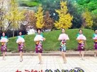 太原魅力無限廣場舞《萬水千山總是情》編舞春英 團隊正背面演示