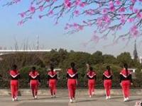 茉莉广场舞《兄弟一起醉》原创健身劲舞 正背面口令分解动作教学演示
