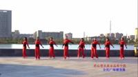 雪绒花广场舞 在心里从此永远有个你 表演 团队版