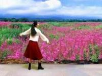 芳华岁月舞蹈舞《那些花儿》编舞萃萃 短片预告