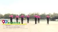 河南平顶山郏县三馆快乐舞队 我和我的祖国 表演 团队版